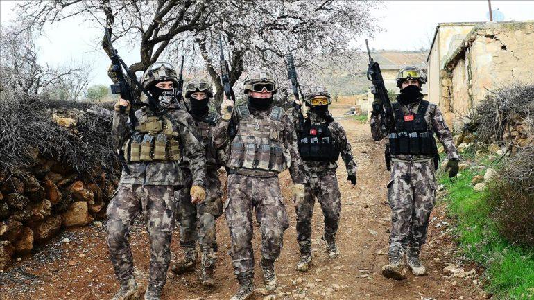 TSK  Profesyonel Ordu Nedir